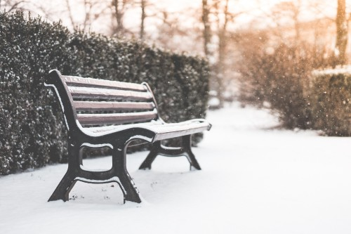 bench-in-a-park-and-snowy-weather_free_stock_photos_picjumbo_DSC02670b57415ab761a5929.jpg