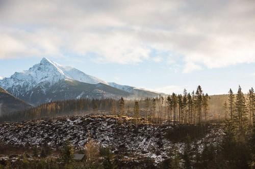 big-mountain-and-morning-woods-scenery_free_stock_photos_picjumbo_hnck0614-1080x7202226e3ca4df25e81.jpg