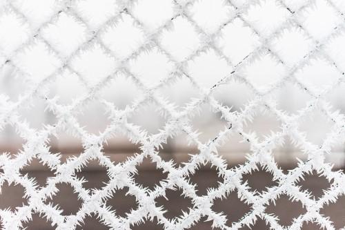 bitter-cold-vs-steel-fence_free_stock_photos_picjumbo_DSC025525280aaeb550ed062.jpg