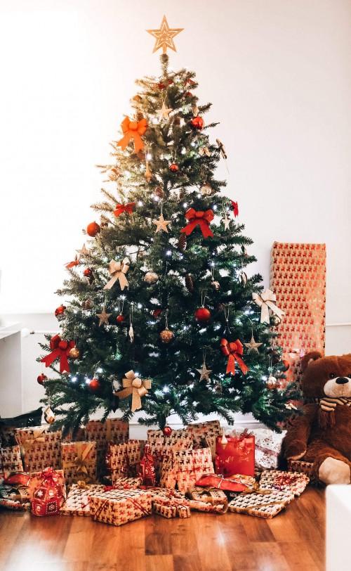 christmas-tree-free-photo-1080x17544ff920286bf14cd6.jpg