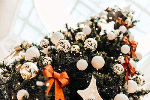 christmas-tree-free-pictures-1080x720798a50d59a0c73c7.jpg