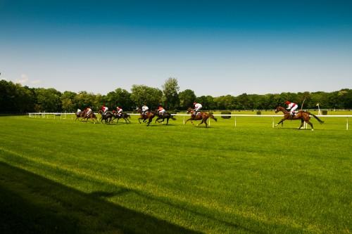horse-racing-oval-track_free_stock_photos_picjumbo_IMG_9325b0b8fc93f9eb07ae.jpg
